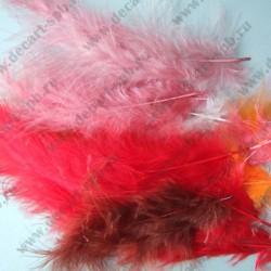 Перья марабу ассорти рыже-розовый 15шт