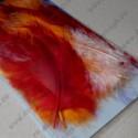 Перья марабу , оранжево-красное ассорти, около 15 шт