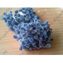 Тычинки двусторонние сахарные, цвет синий, 1 шт